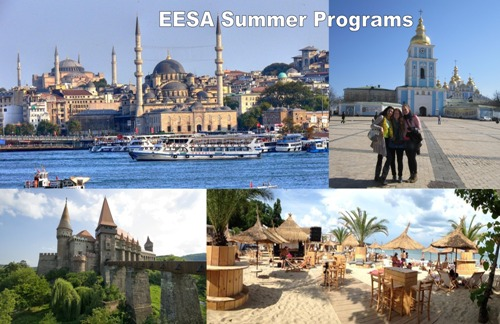 EESA Summer programs